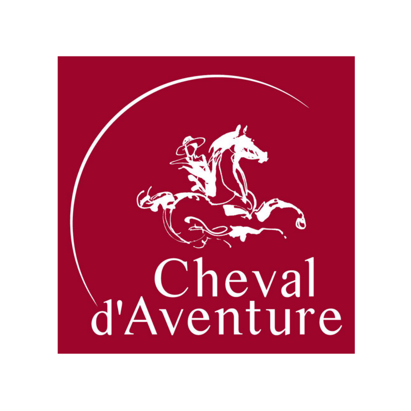 Image result for cheval d'aventure