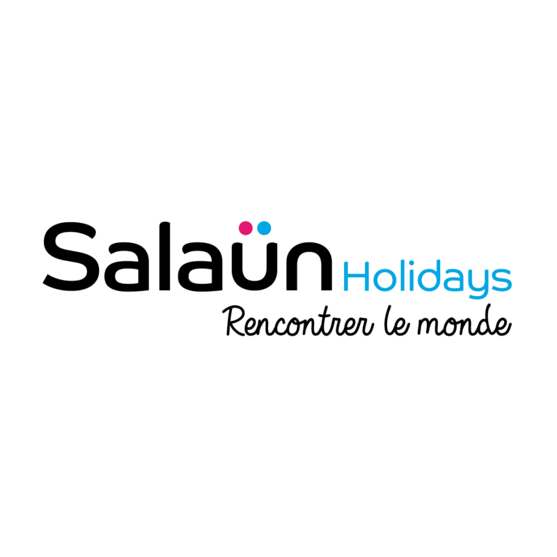 logo_salaun